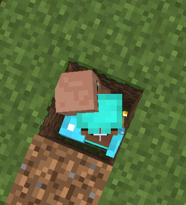 Stuck in a hole with Villager